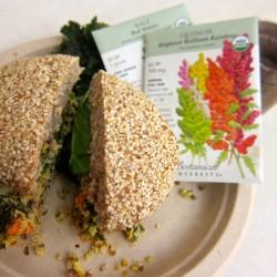 An Alternative Happy Meal, An Alternative Future?