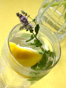 Water with Mint and Lemon