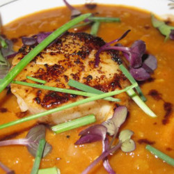 Seared Scallops with Moroccan Spices, Red Lentils, and Sweet Potatoes
