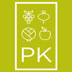 Healthy Holidays: PK's Top Ten Tips